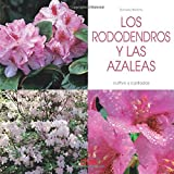 Los rododendros y las Azaleas