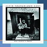 Songtexte von Alvin Youngblood Hart - Big Mama's Door