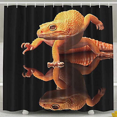 DGFhk Orange Geckos Inverted Reflection Bathroom Curtains Shower Rings Included 60