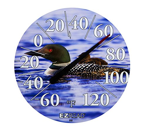 Headwind Loons High Definition Thermometer Galileo-thermometer-barometer
