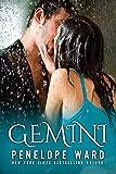 Gemini (English Edition)