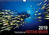 Tauchen im Roten Meer 2019 (Wandkalender 2019 DIN A4 quer): Eine faszinierende Reise unter Wasser ins Blaue des Roten Meeres (Monatskalender, 14 Seiten ) (CALVENDO Sport)