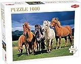 Tactic 53929Camargue Pferde Puzzle (1000Teile)