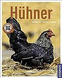 Hühner: auswählen, halten, pflegen (Mein Tier)