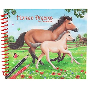 Depesche 8087 Carnet De Coloriage De Poche Horses Dreams Amazon