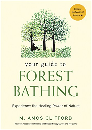 Your Guide to Forest Bathing: Experience the Healing Power of Nature