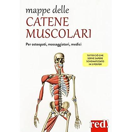 Mappe Delle Catene Muscolari
