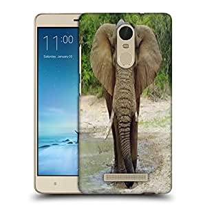 Snoogg Elephant Designer Protective Back Case Cover For REDMI NOTE 3