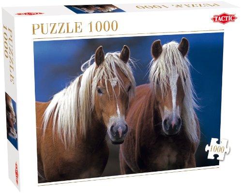 Zwei Pferde Preisvergleich