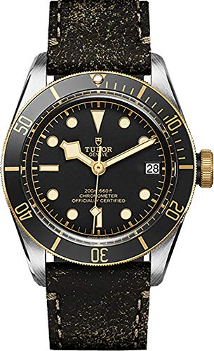 Uomo Tudor Heritage Black Bay Gold 79733N 41 mm