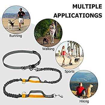 Hände Frei Hundeleine, Gearlifee Einziehbar Reflektierende Nähte Dual Bungees Diy Hundeleinen Mit Gürteltasche, Triangle Traction Belt, Hundefutter Dispenser Für Den Lauf Walking Wandern Training (Orange) 6