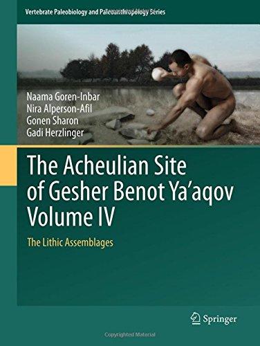 The Acheulian Site of Gesher Benot Ya'aqov. Volume IV: The Lithic Assemblages por NAAMA GOREN-INBAR