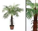 Kokos Kunstpalme mit 12 Wedel und 90cm Höhe - Kunstpflanze Kunstbaum künstliche Palmen Kunstpalmen Dekopalmen Palmen Palmbäume