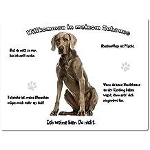 Merchandise for Fans Blechschild/Warnschild/Türschild - Aluminium - 15x20cm - -Willkommen in meinem Zuhause - Motiv: Weimaraner - 03