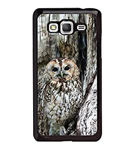 Fuson Designer Phone Back Case Cover Samsung Galaxy Grand Max G720 ( Owl On The Tree )