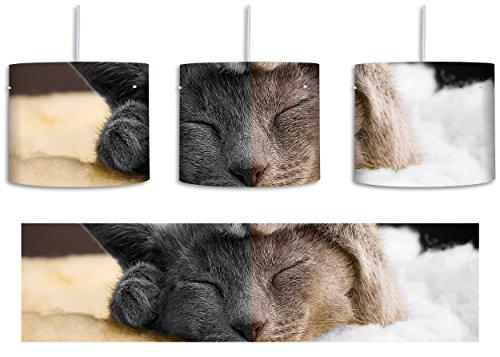 Süßes schlafendes Kätzchen schwarz/weiß inkl. Lampenfassung E27, Lampe mit Motivdruck, tolle Deckenlampe, Hängelampe, Pendelleuchte - Durchmesser 30cm - Dekoration mit Licht ideal für Wohnzimmer, Kinderzimmer, (Mit Schwänzen Mantel)