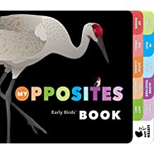 My Opposites Book (Early Birds™ Learning Series, Band 3)