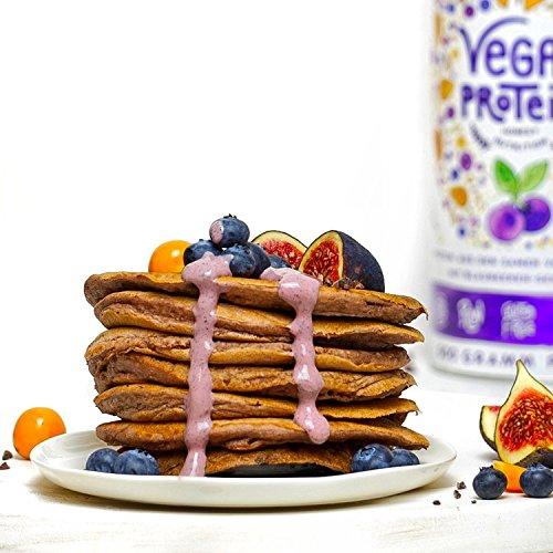 Vegan Protein (Blaubeere) - Protein aus Reis, Hanfsamen, Lupinen, Erbsen, Chia-Samen, Leinsamen, Amaranth, Sonnenblumen- und Kürbiskernen - 600 Gramm Pulver mit natürlichem Blaubeeren Geschmack - 6