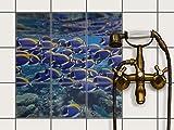 Fliesenspiegel Dekorationssticker | Fliesen-Sticker Aufkleber Folie selbstklebend Bad renovieren Küche Bad Ideen | 15x15 cm Design Motiv Fish swarm - 9 Stück