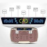 Big seller Vibrationsplatte Vibrierende und oszillierende Plattformen, schütteln Sie Maschine Fettes brennendes dünnes Gurthausfitnessgerät (Farbe : Messing) - 6