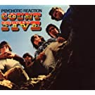 Psychotic Reaction by Count Five (2007-10-31)