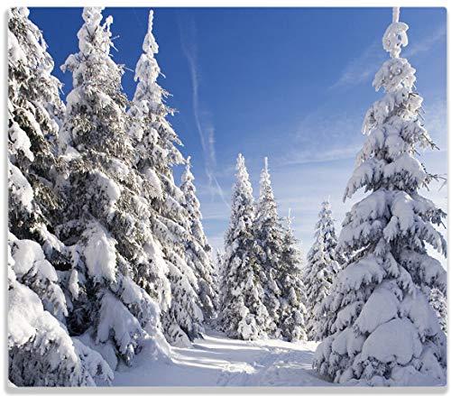 Wallario Herdabdeckplatte / Spitzschutz aus Glas, 1-teilig, 60x52cm, für Ceran- und Induktionsherde, Wanderweg im Schnee