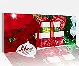 Acrylglasbild 100x40cm Kugel Sylvester Weihnachten Geschenke Tanne Baum Acrylbild Acryl Druck Acrylglas Acrylglasbilder 14A9756, Acrylglas Größe1:100cmx40cm