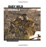 Baby Wild Animals Mini Wall Calendar 2018: 16 Month Calendar