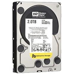WD RE4 2 TB Enterprise Hard Drive: 3.5 Inch, 7200 RPM, SATA II, 64 MB Cache - WD2003FYYS