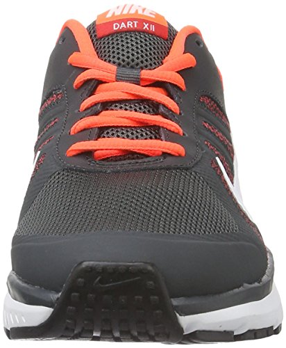 Nike Dart 12, Chaussures de Running Homme Gris (Anthracite / White-Total Crimson)