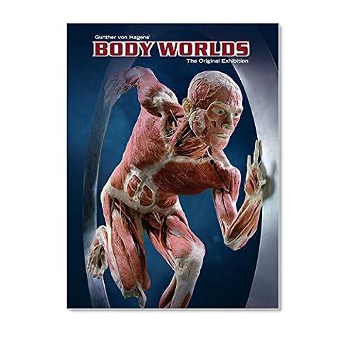 Exhibition Catalog BODY WORLDS (English)