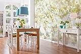 Komar - Fototapete DAISIES - 368 x 254 cm - Tapete, Wand Dekoration, Blume, Blüten, Margeriten, Natur, Wiese - 8-994