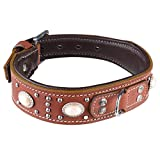 GENUINE LEATHER DOG COLLAR Type Apache Native...