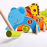 FLAMEER Tierform Krocketspiel Minigolf Holzspielzeug für Kinder ab 3 Jahre Alt