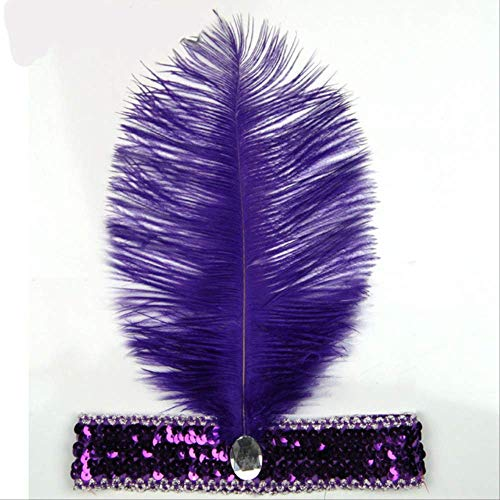 Bandas plumas solapa lentejuelas accesorios vestir