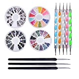 Biutee Pro Nail Art Set Kit 4 Wheels Multicolor Nail Rhinestones Decoration Wooden Nail art Brushes Double Ended Dotting Marbling Tools by Biutee