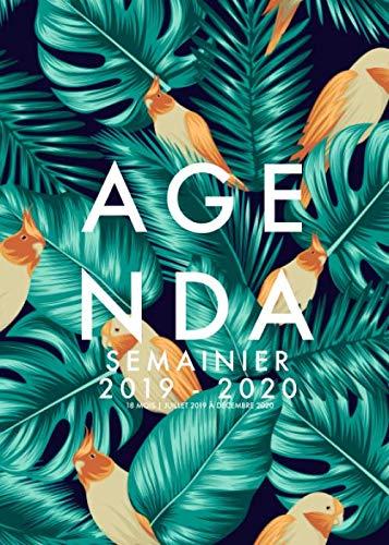 Agenda Semainier 2019/2020 | 18 Mois | Juillet 2019 à Décembre 2020: Agenda organiseur pour ton quotidien - Calendar & Planificateur 2019 | Motif floral & oiseaux | Agenda de poche format A5 par  Papeterie Collectif