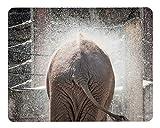 """Design Mauspad Bild """"Elefant"""" 24 x 19 cm/Fransenfreier Rand/glatte Kunststoff Oberfläche Abwischbar/Rutschfeste Unterseite/Foto-Druck bunt"""