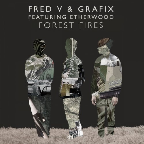 Forest Fires (feat. Etherwood) [Massappeals Remix]
