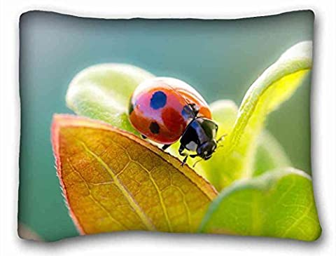 Generic Personalized ( Animal Ladybug ) Pillow Covers Bedding Accessories Size 20