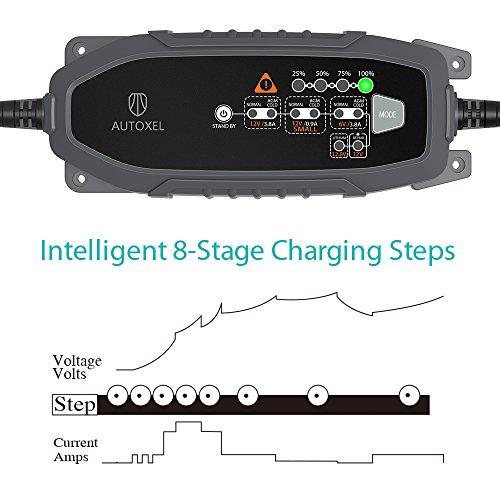 Zoom IMG-2 autoxel caricabatterie e mantenitore per