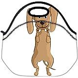 Snoogg Perro Viaje al aire libre lleva el bolso de mano de la comida campestre Almuerzo envase de la caja postal Fuera extraíble Carry Handle Bag Lunchbox Tote Bag Lunch Comida Para Oficina de Trabajo de la Escuela