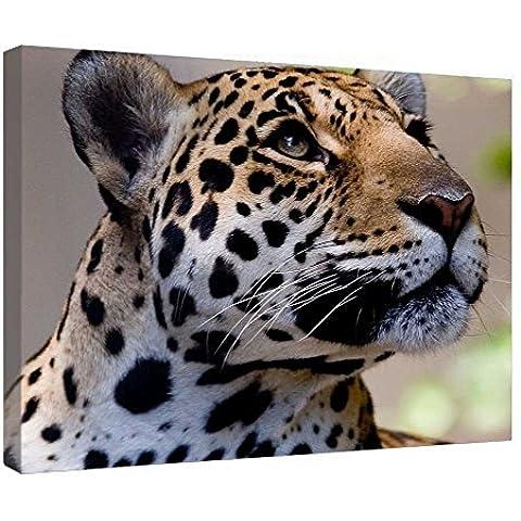 LeeQueen Las Impresiones Sobre Lona Arte de la Pared - Leopardo - Antecedentes Consejo de Madera Estirada Abrigo de la Lona Listo Para Colgar Para el Hogar y la Decoración de la Oficina - 24