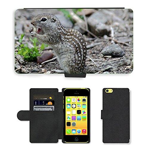 Just Mobile pour Hot Style Téléphone portable étui portefeuille en cuir PU avec fente pour carte//m00138517mexicanus ictidomys sol mexicain//Apple iPhone 5C
