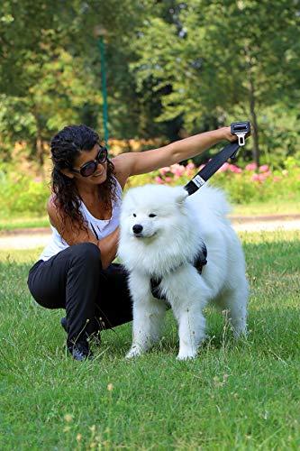 Hunde Auto Sicherheitsgurt, Hundegurt Sicherheitsgeschirr, Anschnallgurt für kleine Hunde - 6