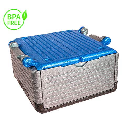 Lisk. Flip Box Ice Bear Classic 23l - isolierte & Faltbare Thermobox aus hochwertigem EPP für Einkäufe & Ausflüge (blau)