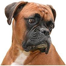 NUEVO Collar de perro boxer – Tamaño Grande ...