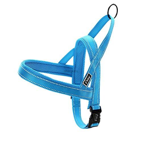 Stale Keine Pull Nylon Quick Fit Hundegeschirr Weste Reflektierende Mesh Welpengeschirre Hunde Einstellbar Blue M -