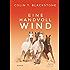 Eine Handvoll Wind