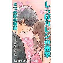 shoppo-kareshino-syogeki (heroic novel) (Japanese Edition)